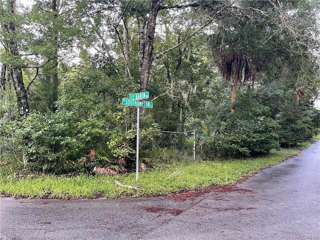 10520 S Le Baron Drive, Homosassa, FL 34448 (MLS #805907) :: Plantation Realty Inc.