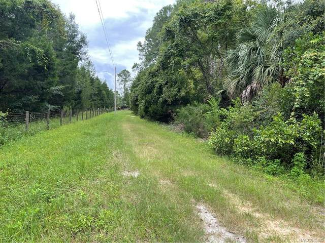 2426 S Melanie Drive, Homosassa, FL 34448 (MLS #805924) :: Plantation Realty Inc.