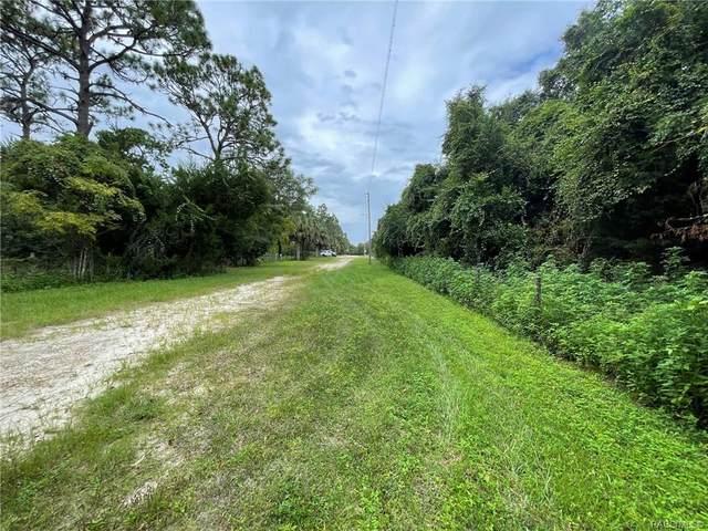 2452 S Melanie Drive, Homosassa, FL 34448 (MLS #805925) :: Plantation Realty Inc.