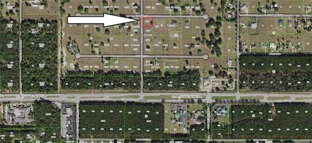272 E Samuel Court, Hernando, FL 34442 (MLS #805953) :: Dalton Wade Real Estate Group