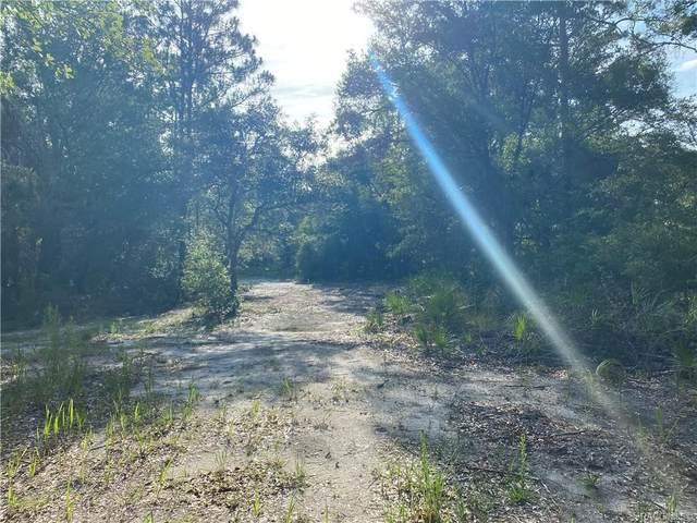 11991 W Flaxen Drive, Crystal River, FL 34428 (MLS #805973) :: Plantation Realty Inc.