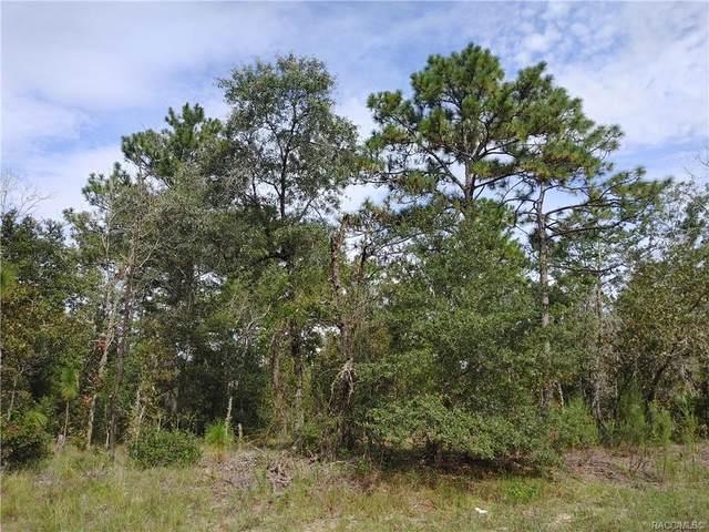 6673 N Libby Terrace, Citrus Springs, FL 34433 (MLS #805978) :: Plantation Realty Inc.