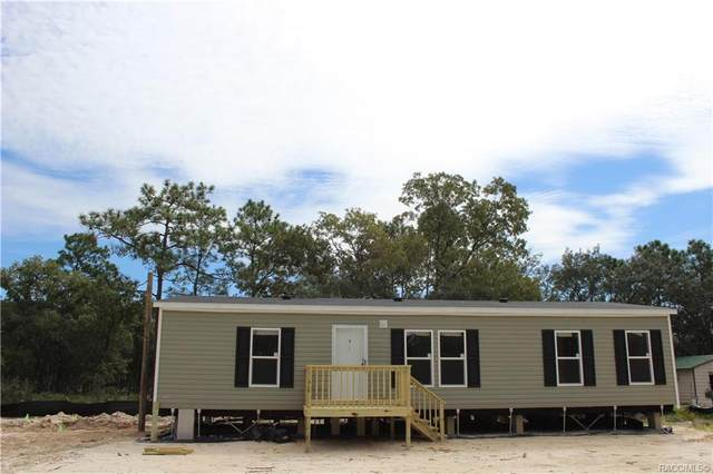 5377 S Heloise Terrace, Homosassa, FL 34446 (MLS #805987) :: Plantation Realty Inc.