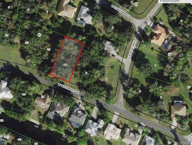 11729 W Waterway Drive, Homosassa, FL 34448 (MLS #806004) :: Plantation Realty Inc.