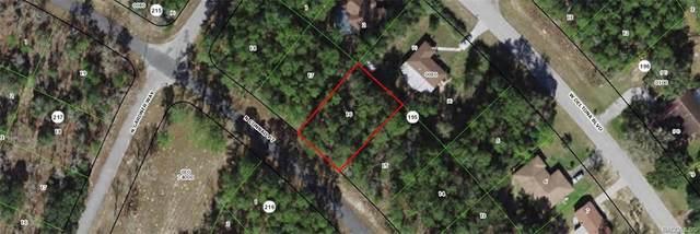10131 N Conrad Point, Citrus Springs, FL 34434 (MLS #806036) :: Plantation Realty Inc.