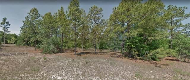 11826 N Shenandoah Way, Citrus Springs, FL 34433 (MLS #806042) :: Plantation Realty Inc.