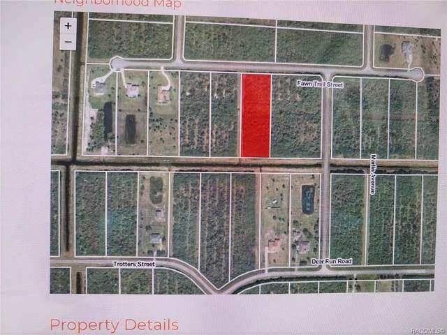325 Fawn Trail Street, Palm Bay, FL 32909 (MLS #806043) :: Plantation Realty Inc.