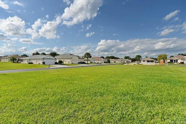 3756 E Kiwi Cove Court, Hernando, FL 34441 (MLS #806049) :: Plantation Realty Inc.