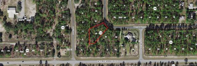 2424 W Elmore Loop, Citrus Springs, FL 34434 (MLS #806053) :: Plantation Realty Inc.