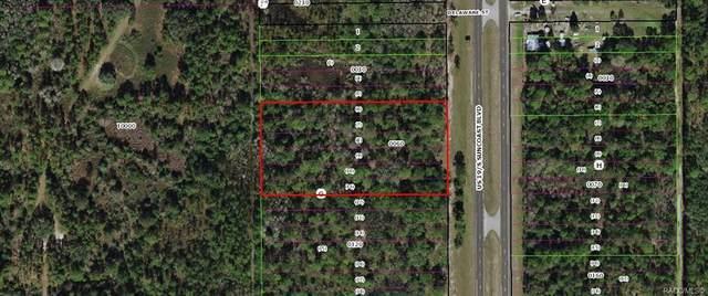9100 S Suncoast Boulevard, Homosassa, FL 34446 (MLS #806056) :: Plantation Realty Inc.