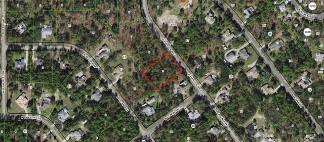 6020 N Maroon Way, Beverly Hills, FL 34465 (MLS #806057) :: Plantation Realty Inc.