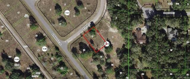7423 N Iron Point, Citrus Springs, FL 34434 (MLS #806059) :: Dalton Wade Real Estate Group