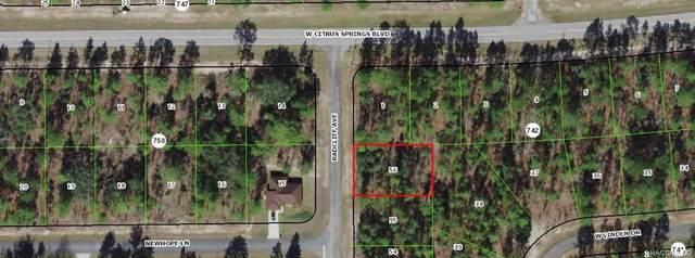 7299 N Radcliff Avenue, Citrus Springs, FL 34434 (MLS #806060) :: Dalton Wade Real Estate Group