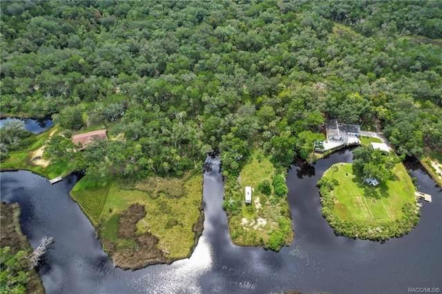 6960 S Hancock Road, Homosassa, FL 34448 (MLS #806067) :: Plantation Realty Inc.