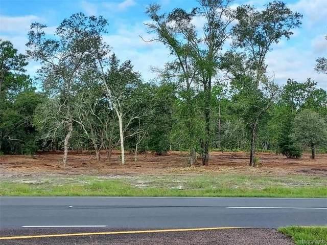 10370 S Suncoast Boulevard, Homosassa, FL 34446 (MLS #806070) :: Plantation Realty Inc.
