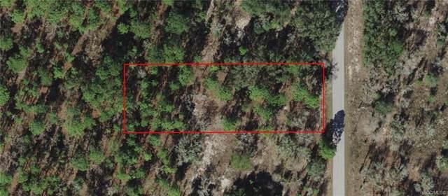 026 SW Half Moon Drive, Dunnellon, FL 34431 (MLS #806073) :: Plantation Realty Inc.