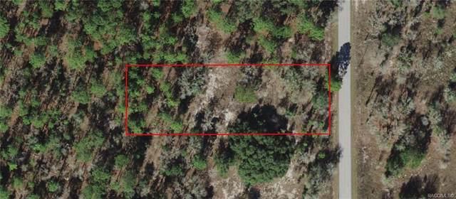 027 SW Half Moon Drive, Dunnellon, FL 34431 (MLS #806076) :: Plantation Realty Inc.