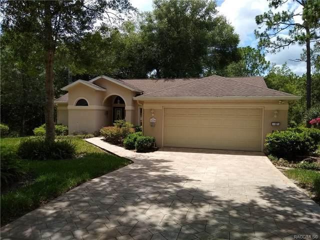 12 Carnation Court, Homosassa, FL 34446 (MLS #806077) :: Plantation Realty Inc.