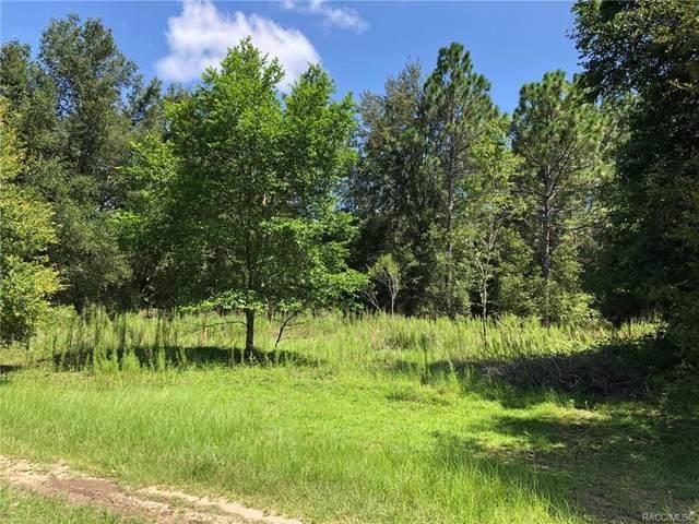 2211 Adams Street, Inverness, FL 34453 (MLS #806086) :: Plantation Realty Inc.