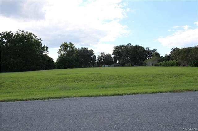 1136 N Cherry Pop Drive, Hernando, FL 34442 (MLS #806101) :: Plantation Realty Inc.