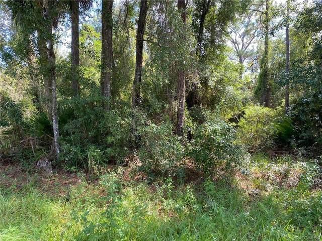 8540 W Wings Lane, Crystal River, FL 34429 (MLS #806102) :: Plantation Realty Inc.