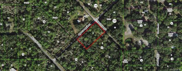 8924 N Evenstock Way, Crystal River, FL 34428 (MLS #806104) :: Plantation Realty Inc.