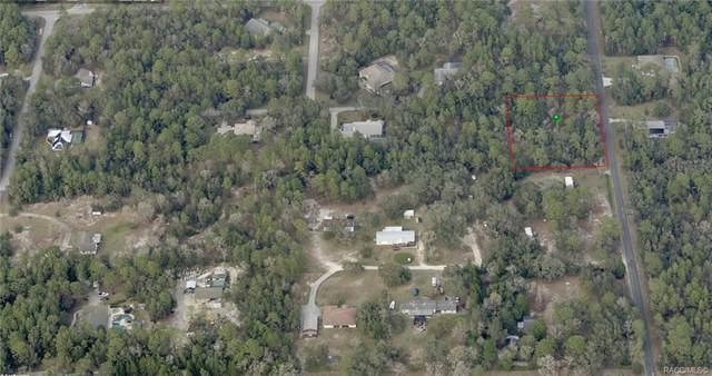 12 S Easy Street, Lecanto, FL 34461 (MLS #806180) :: Plantation Realty Inc.