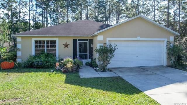 9647 N Choir Terrace, Citrus Springs, FL 34433 (MLS #806228) :: Plantation Realty Inc.