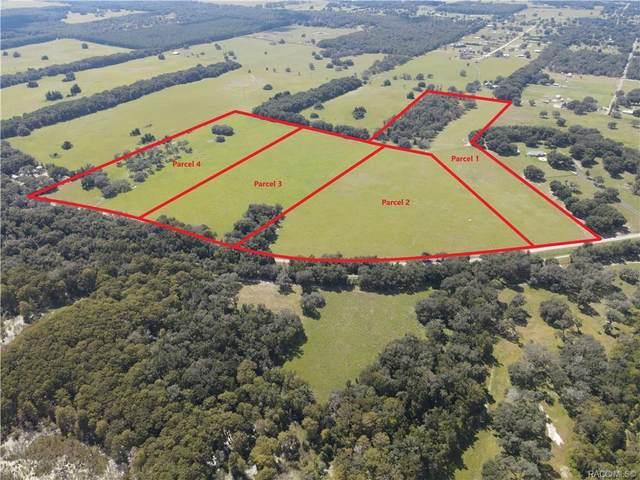 10642 S Istachatta Lot 1 Road, Floral City, FL 34436 (MLS #806280) :: Plantation Realty Inc.