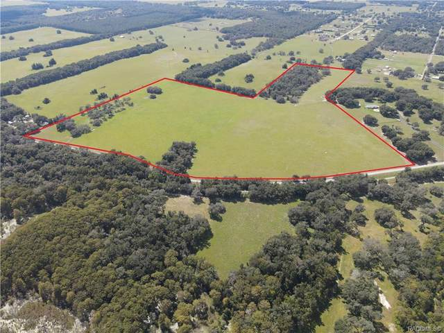 10642 S Istachatta Road, Floral City, FL 34436 (MLS #806304) :: Plantation Realty Inc.