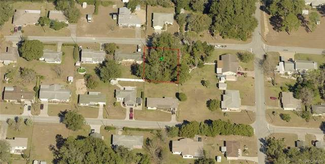 701 Oak Street, Inverness, FL 34452 (MLS #806401) :: Plantation Realty Inc.
