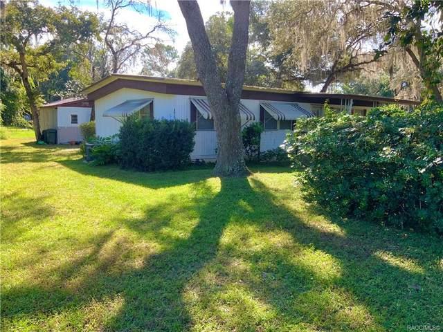 6615 N iris Drive, Hernando, FL 34442 (MLS #806404) :: Plantation Realty Inc.