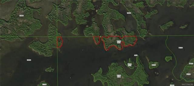 15310 The St Martins River, Crystal River, FL 34429 (MLS #806432) :: Plantation Realty Inc.