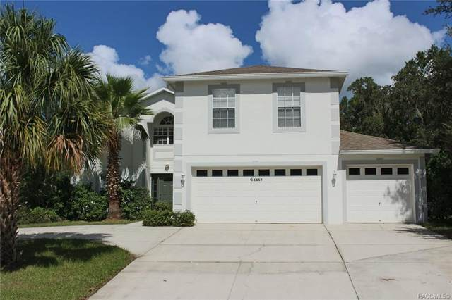 6 Shumard Court E, Homosassa, FL 34446 (MLS #806477) :: Plantation Realty Inc.