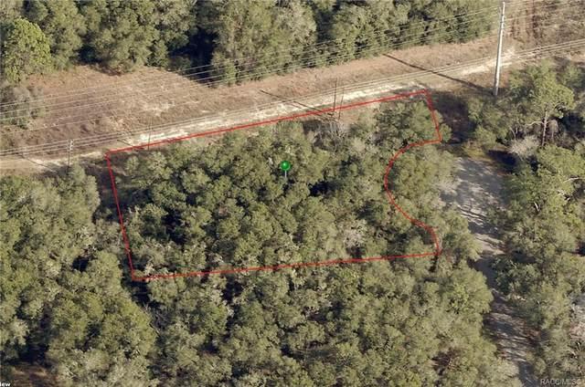 3093 E Queens Court, Inverness, FL 34453 (MLS #806496) :: Plantation Realty Inc.
