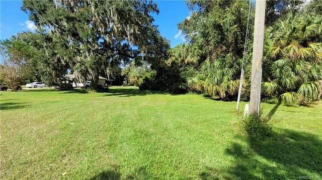 11713 W Timberlane Drive, Homosassa, FL 34448 (MLS #806508) :: Plantation Realty Inc.