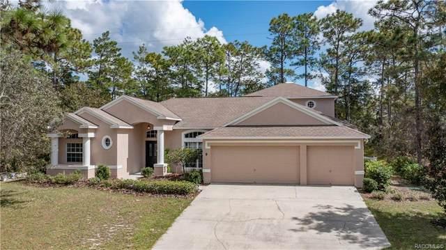 9 Speceberry Court E, Homosassa, FL 34446 (MLS #806537) :: Plantation Realty Inc.