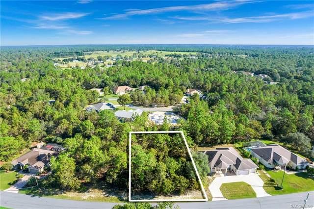 126 Linder Drive, Homosassa, FL 34446 (MLS #806552) :: Plantation Realty Inc.