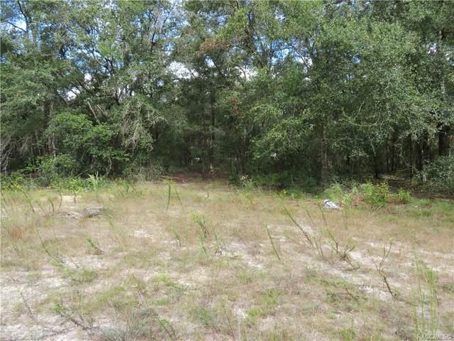 2910 Taylor Street W, Inverness, FL 34453 (MLS #806566) :: Plantation Realty Inc.