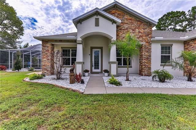 17 Greentree Street, Homosassa, FL 34446 (MLS #806571) :: Plantation Realty Inc.