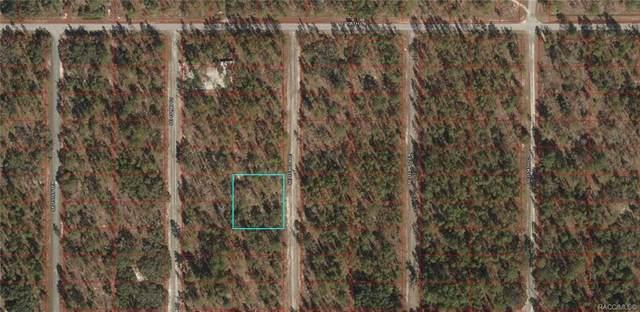 Lots 6.7 SE 133rd Avenue, Dunnellon, FL 34431 (MLS #806585) :: Plantation Realty Inc.