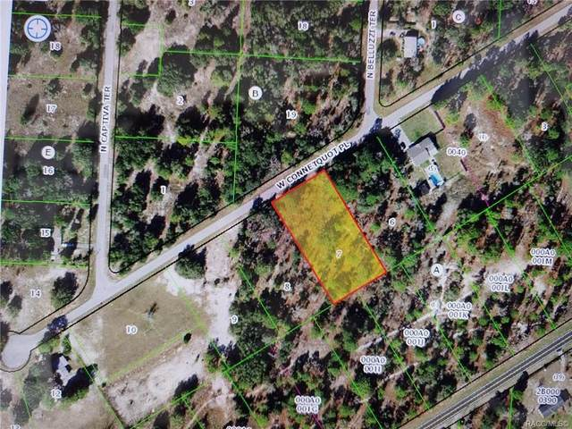 5842 W Connetquot Place, Dunnellon, FL 34433 (MLS #806613) :: Plantation Realty Inc.