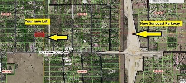 6515 & 6531 S Premiere Avenue, Homosassa, FL 34446 (MLS #806617) :: Plantation Realty Inc.