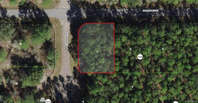 466 E Kingsdale Street, Citrus Springs, FL 34434 (MLS #806619) :: Plantation Realty Inc.