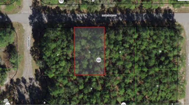 478 E Kingsdale Street, Citrus Springs, FL 34434 (MLS #806622) :: Plantation Realty Inc.