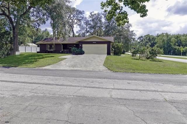 10056 N Ocean Drive, Citrus Springs, FL 34434 (MLS #806636) :: Plantation Realty Inc.