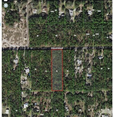 4636 W Sandy Hill Street, Lecanto, FL 34461 (MLS #806640) :: Plantation Realty Inc.
