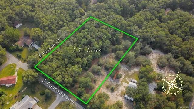 4550 S Cascade Avenue, Inverness, FL 34452 (MLS #806642) :: Plantation Realty Inc.