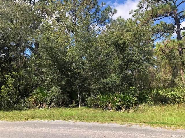 24 Mangrove Court S, Homosassa, FL 34446 (MLS #806650) :: Plantation Realty Inc.