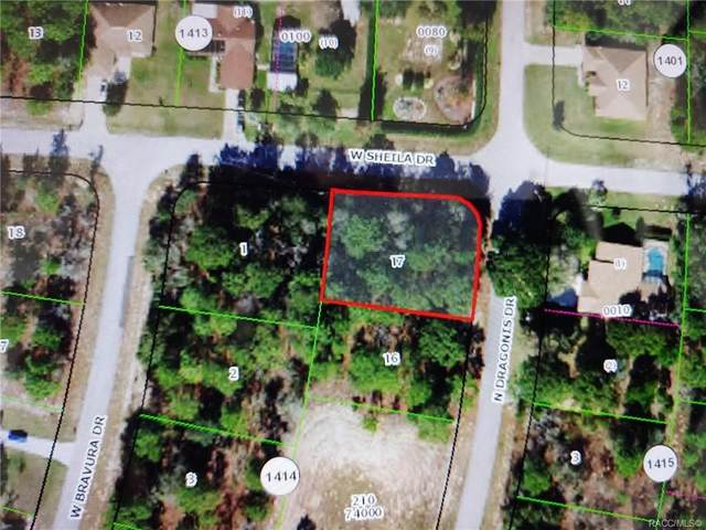 10798 N Dragonis Drive, Citrus Springs, FL 34433 (MLS #806652) :: Plantation Realty Inc.